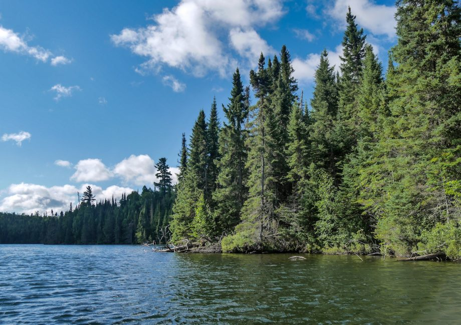 Boundary Waters 2020